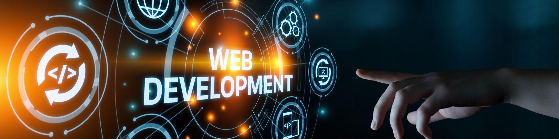 Was ist eine professionelle Wordpress Entwicklung? 1
